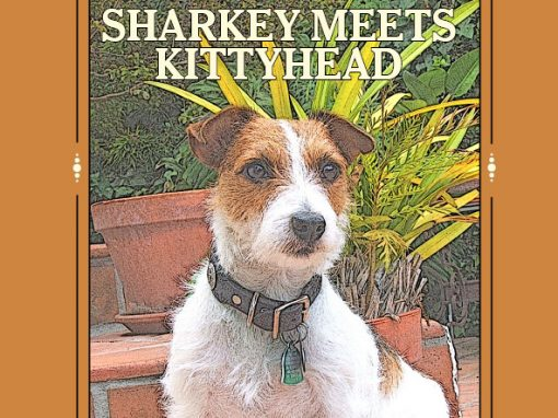 Sharkey Meets Kittyhead by Susan R. Stoltz